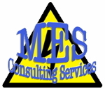 MES Consulting Services.